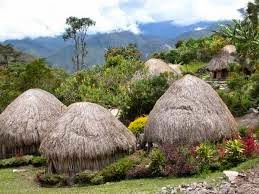 Kebudayaan Suku Dani
