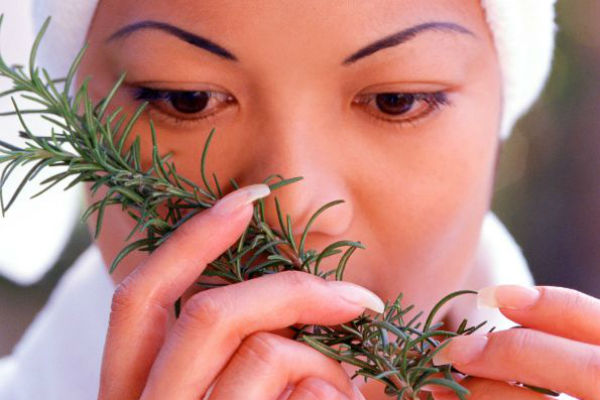 Sniffing Rosemary Can Improve Memory By 75%