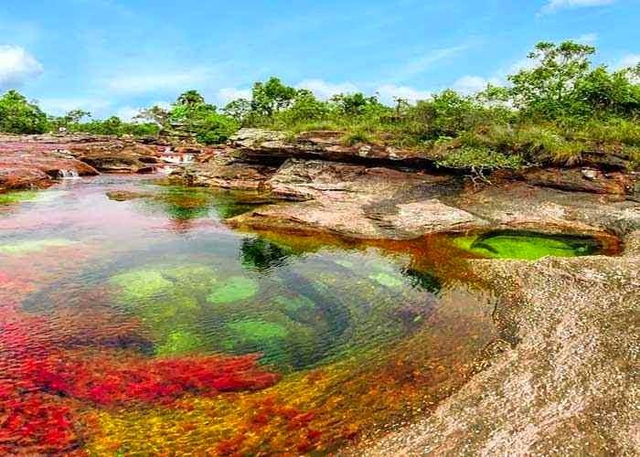 Cano Cristale, Serrania de la Macarena,wisata menakjubkan,wisata