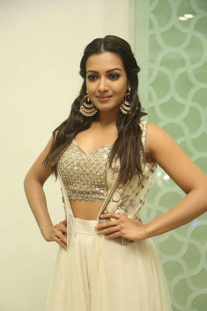 Catherine Tresa Photos At Gautham Nanda Success Meet