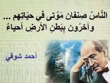 احمد,شوقي,الناس,صنفان