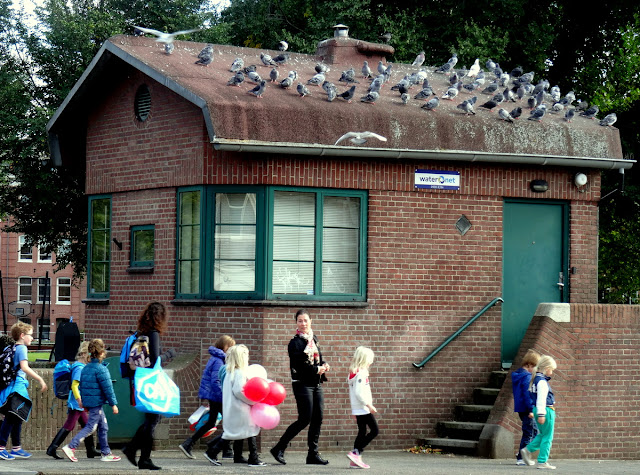 Kids, doves and a Utility Bridge House