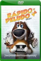 Ozzy: Rápido y Peludo (2016) DVDRip Latino