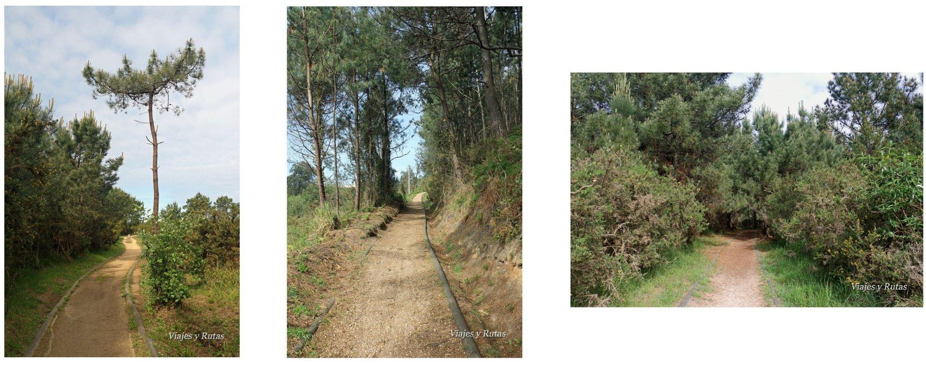 Ruta de Pinos Altos, Asturias