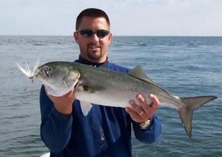 صيد سمك المياس بالقصبة