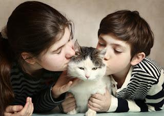 L'Euthanasie chez les animaux : comment en parler à vos enfants ?