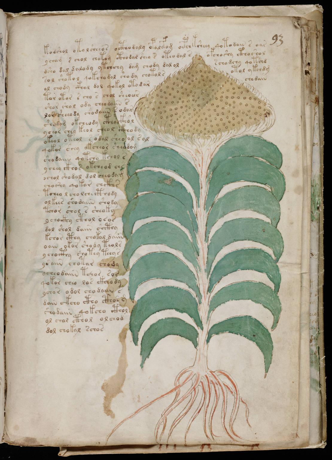 manuscrito165