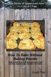 Featured: How To Bake Without Baking Powder