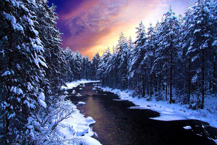 karlı ormanda akan nehire ait kış resimleri