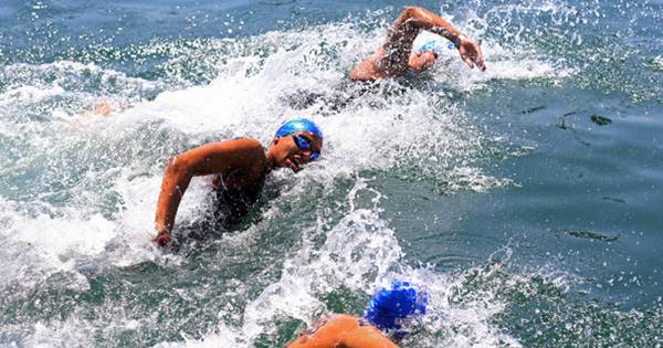 Open Water Swimming Kejuaraan Dunia Akuatik 2017