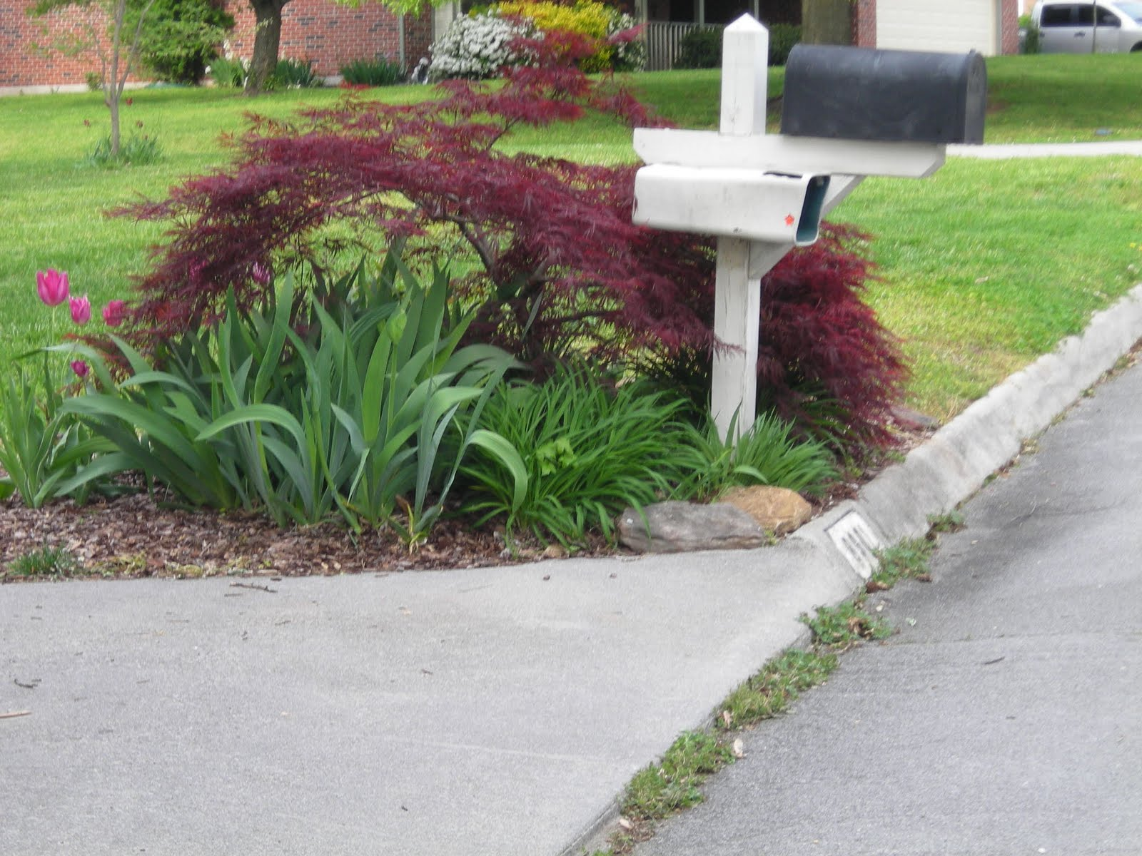 Idea Here Ideas For Landscaping Around Mailbox