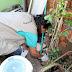 TRÊS LAGOAS| Famílias são orientadas no combate à proliferação de escorpiões