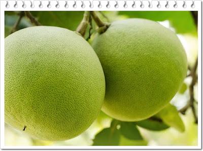 manfaat buah jeruk bali untuk kesehatan