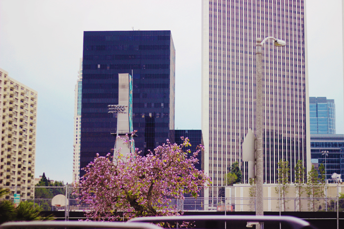century city skyscrapers