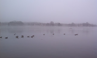 photograph, water, geese, fog, Chesapeake Bay