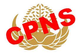 Lowongan CPNS 2018 akan Tiba, Formasi Ditetapkan Bulan Ini