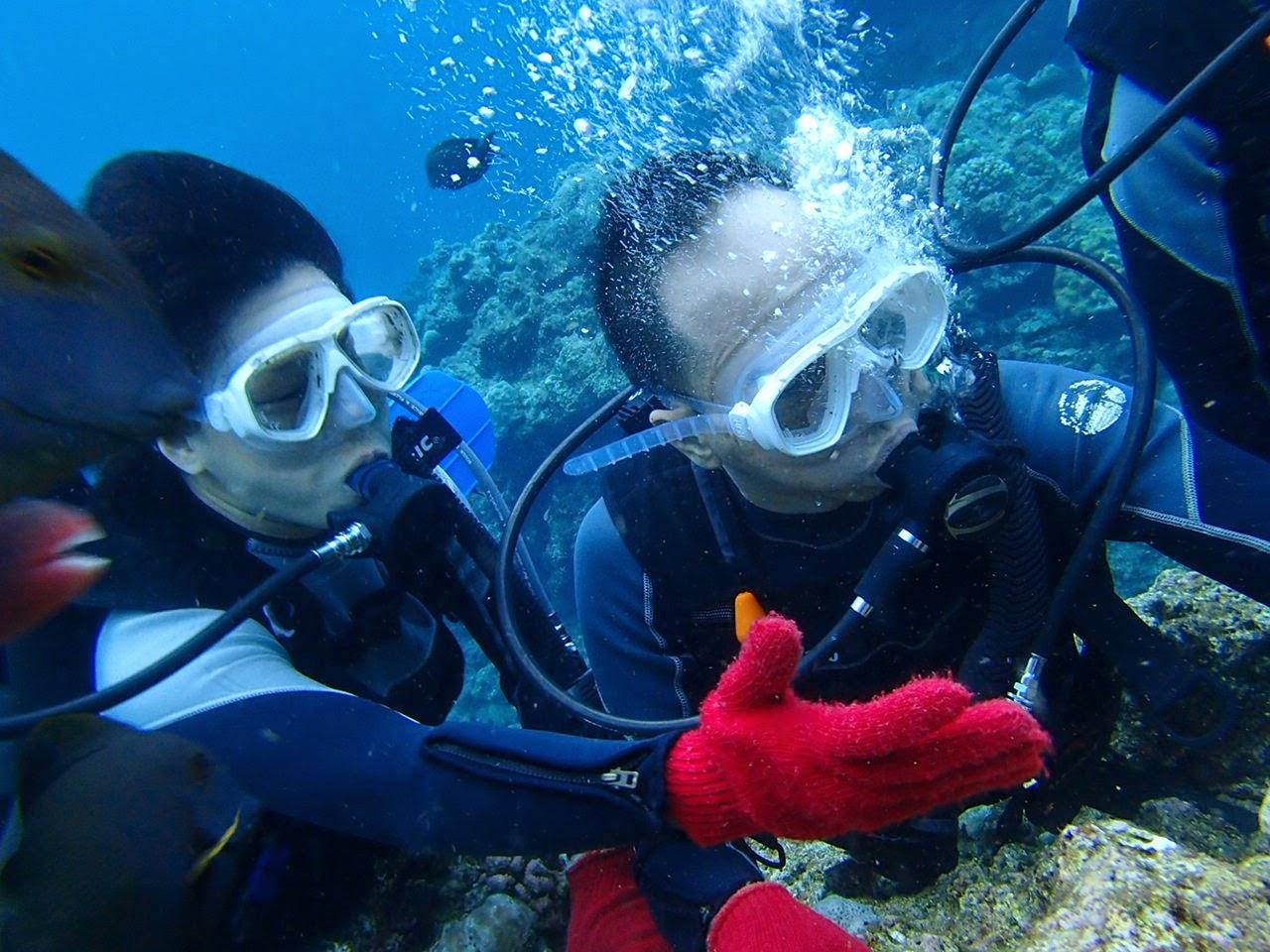 gladysliu: 沖繩自駕遊2014 Monterey Vacation(08)~青洞潛水篇@Natural Blue