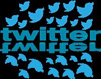 Istilah Istilah Dalam Twitter Dan Penjelasannya