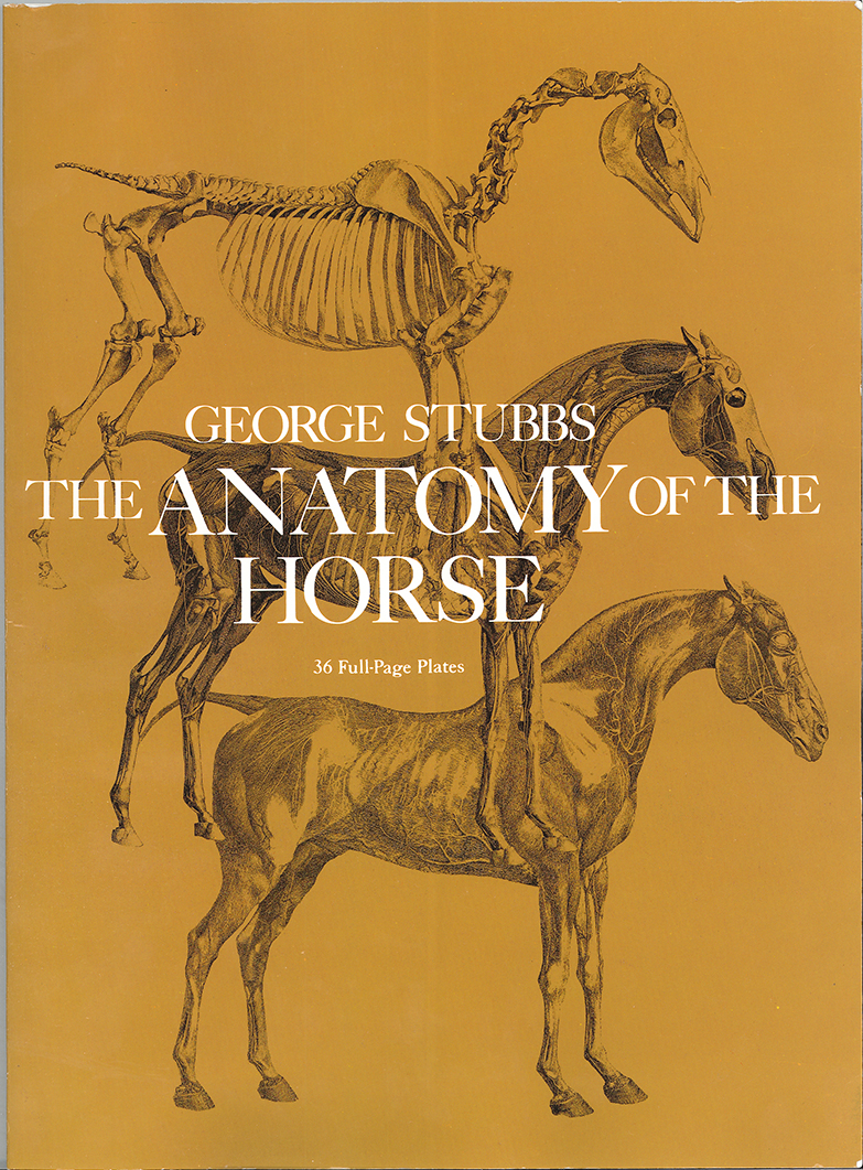 Contemporary The Anatomy Of The Horse George Stubbs Component ...