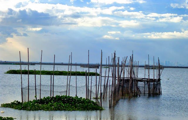 """Above, the """"baklad"""" or local fish corrals.  Image source:  Cesar Castro on Flickr."""