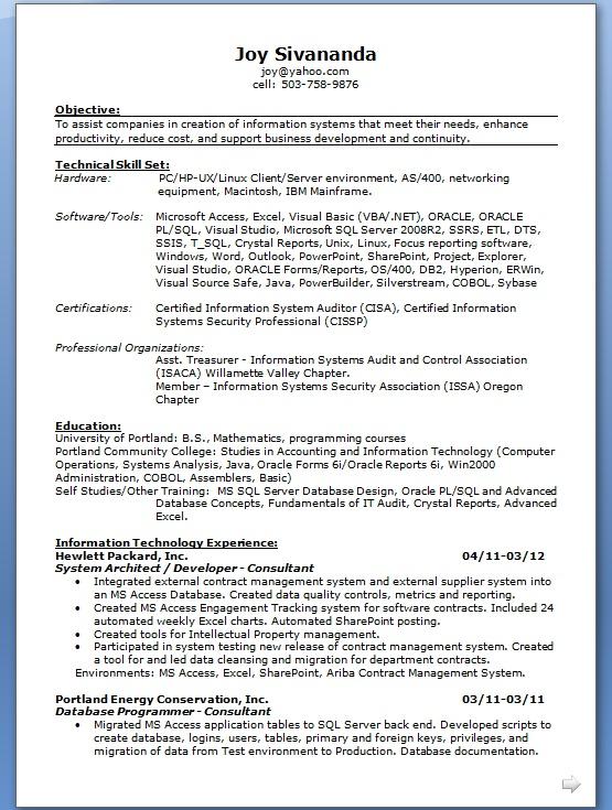 System Architect Developer & Consultant Sample Resume Format