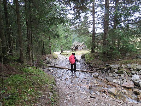 Przecinamy potok przed wejściem na Niżnią Polanę Kominiarską.
