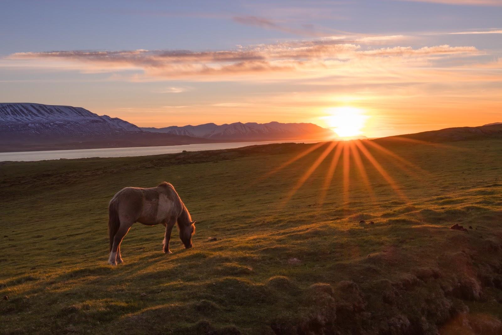 - Islandia 24 - Noticias y viajes a Islandia -: Sol de ...