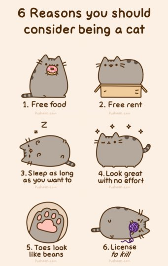 We Highly Recommend Picking Up Your Own Copy Of I Am Pusheen The Cat! Here  Are Some Of The Reasons Why We Love Pusheen: