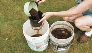 how to making compos tea