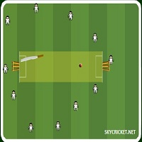 Play Slog Cricket Game