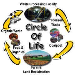 Η λύση για τα σκουπίδια