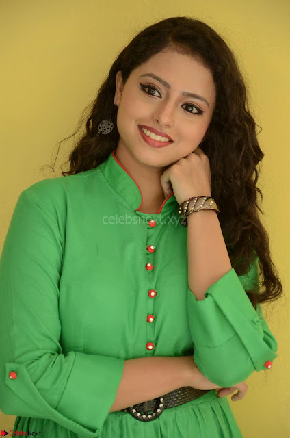 Geethanjali in Green Dress at Mixture Potlam Movie Pressmeet March 2017 001.JPG