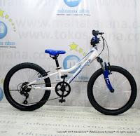 Sepeda Gunung Remaja Reebok Chameleon Spirit Rangka Carbon Steel 6 Speed 20 Inci