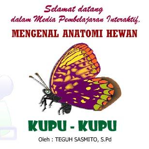 "Mengenal Anatomi Hewan ""Kupu-kupu"" (Ilmu Pengetahuan Alam)"