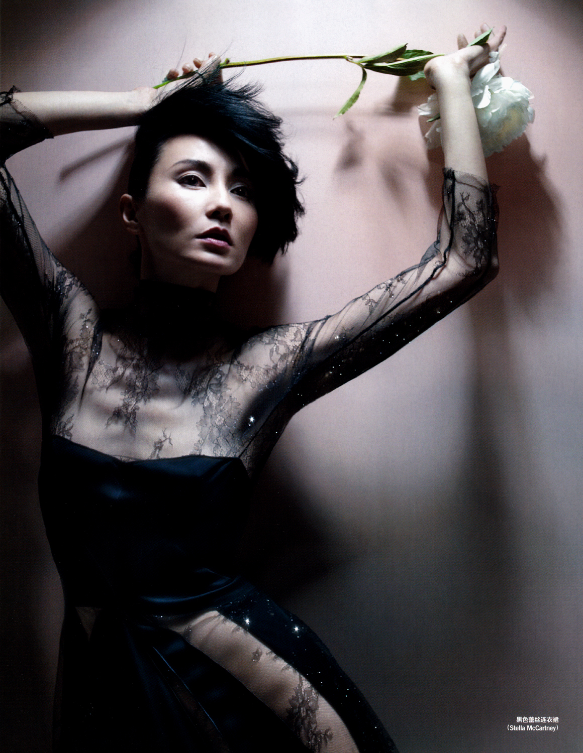 Maggie cheung nude pics-1908