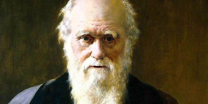 Darwing,Darwin'in Evrim Teorisi,Evrim nedir?,Evrim teorisi nedir?,Doğal seçilim, Evrim gerçeği, Genetik miras,Canlı varyasyonu,Üreme eğilimi,Evrim ve canlılar,A