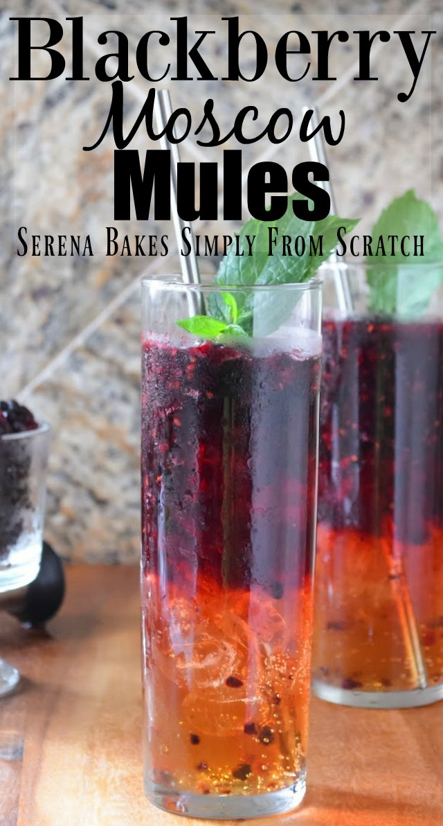 Blackberry Moscow Mules are a summertime favorite cocktail recipe from Serena Bakes Simply From Scratch.