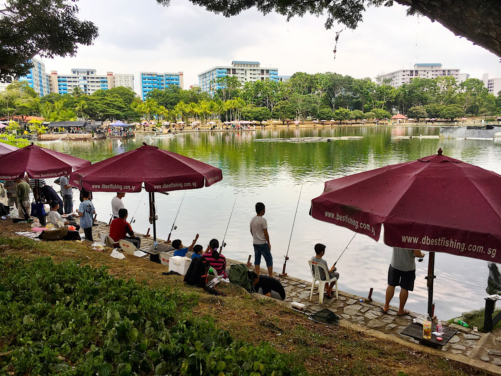 The silver chef beach cabana at pasir ris park fishing and feasting pasir ris park pond thecheapjerseys Gallery