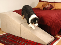 rampas com patamar para cães