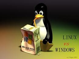 linux-image
