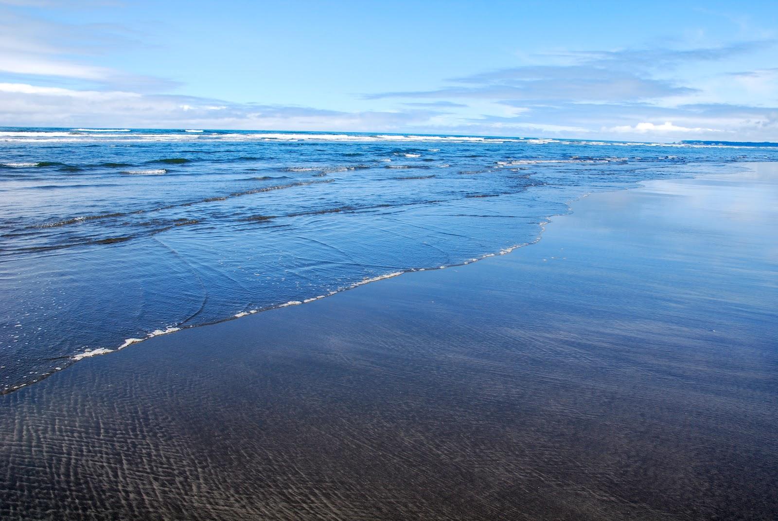 Top 10 US west coast campsites | Travel | theguardian.com |Pacific Beach State Park