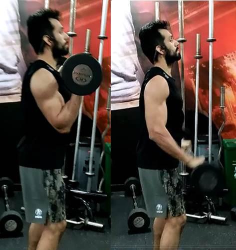 Curl de biceps con barra agarre pronación
