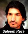 http://www.humaliwalayazadar.com/2016/06/saleem-raza-nohay-2014-to-2017.html