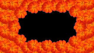 2 Moldura flor laranja especial png