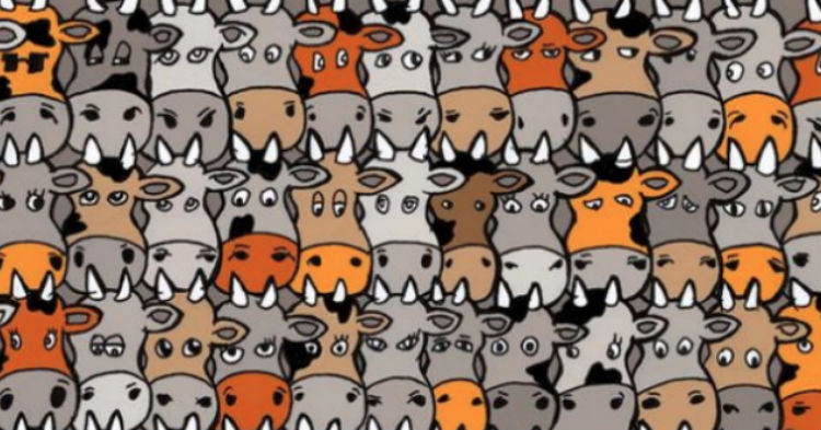 看過的都說找不到!這個牛群裡,竟然藏了一隻狗,你找的出來嗎?