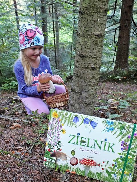 Zielniki - kreatywne książki pełne ciekawostek i przydatnych informacji o otaczających nas roślinach.