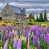 5 Tempat Menarik Bercuti di New Zealand