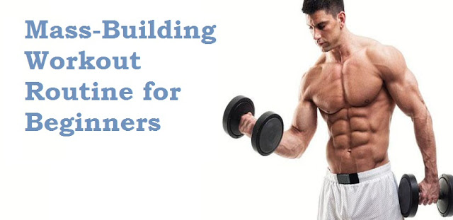 build muscle mass fast
