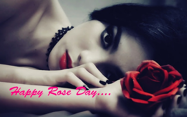 Rose Day Alone Whatsapp Status DP