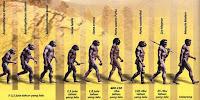Teori Evolusi Dalam Pandangan Islam
